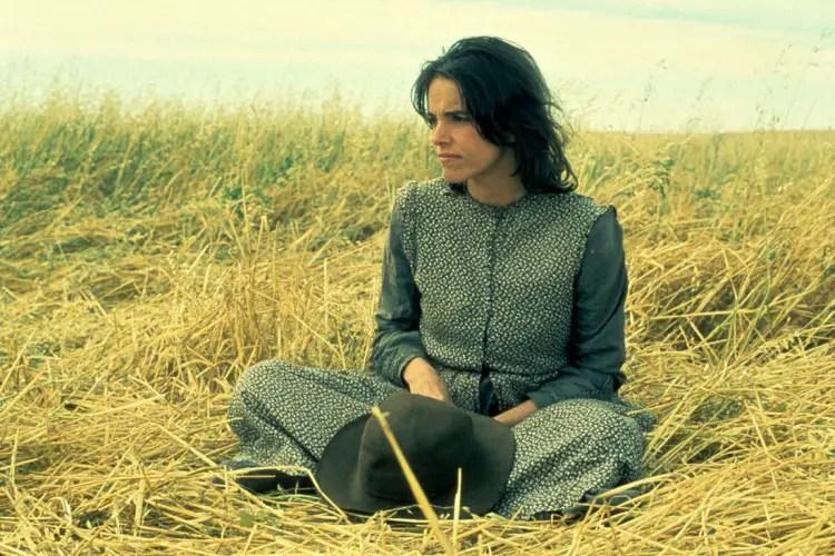 Photo du film LES MOISSONS DU CIEL