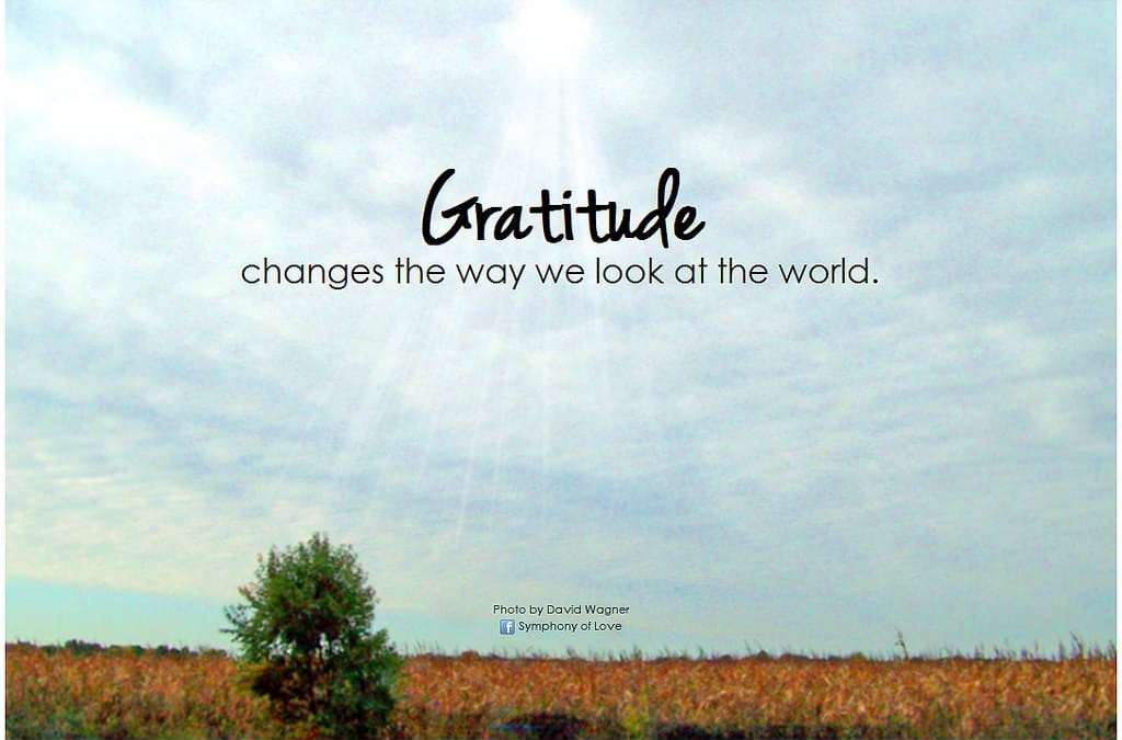 Be Reflective and Thankful !