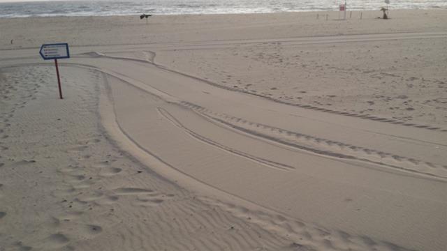 Limpeza Praias Leça