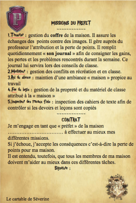 conseil de classe harry potter