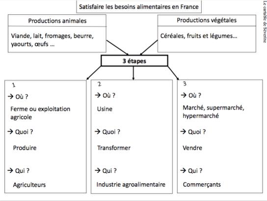 carte mentale besoins alimentaires en France cm1