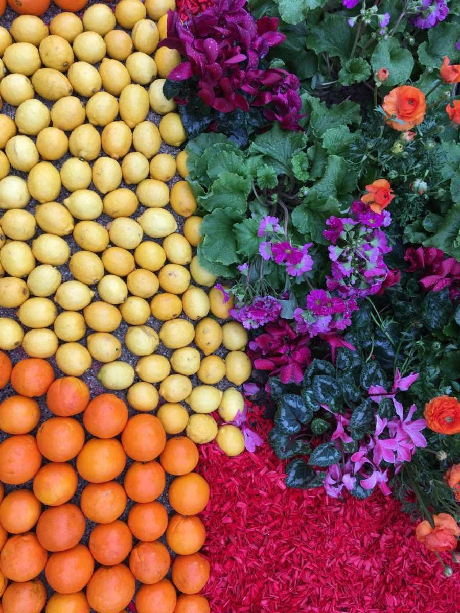 Le citron dans tous ses états à Menton.