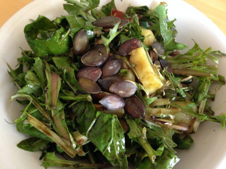 Wildsalat - Unkrautvernichtung mit Messer und Gabel: Löwenzahn mit Kürbiskernöl-Vinaigrette