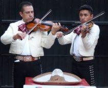 professional violinists
