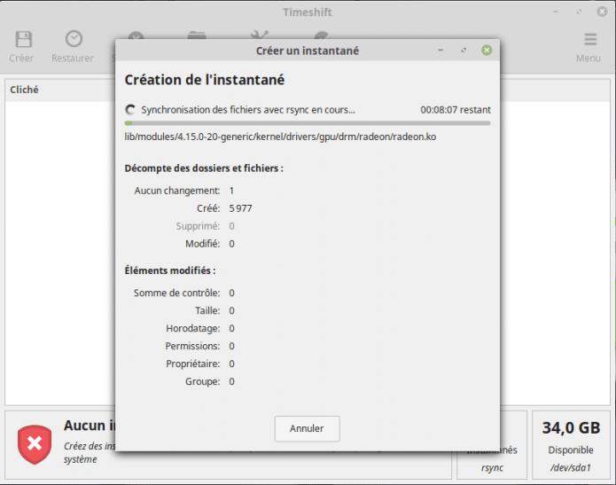 Comment sauvegarder vos données sous Linux Mint ?