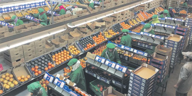 agriculteurs_060.jpg