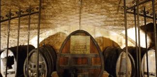 plus vieux vin au monde-strasbourg