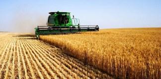 récolte céréalière
