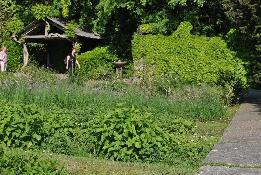 orto di piante officinali Parco Sigurtà