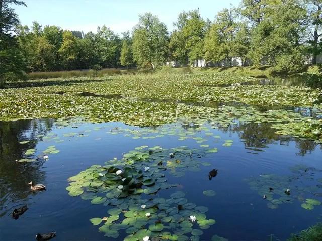 Cesky Krumlov gardens