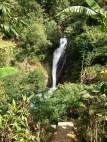bali-Gitgit-cascate (5)