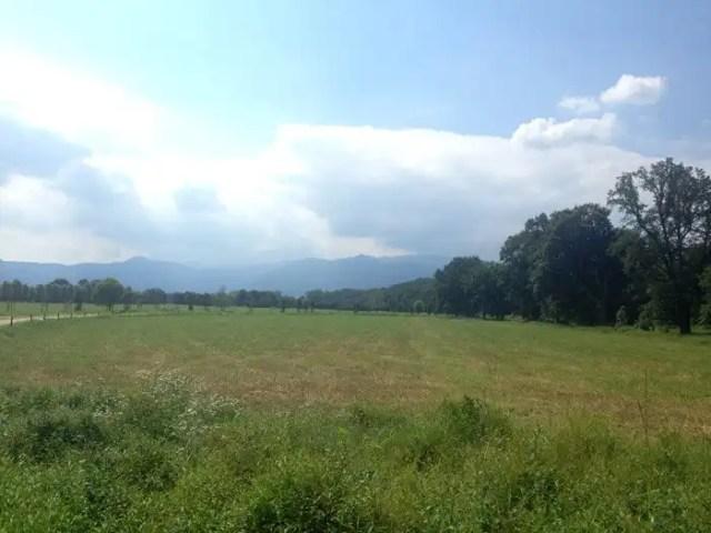 Parco Naturale la Mandria