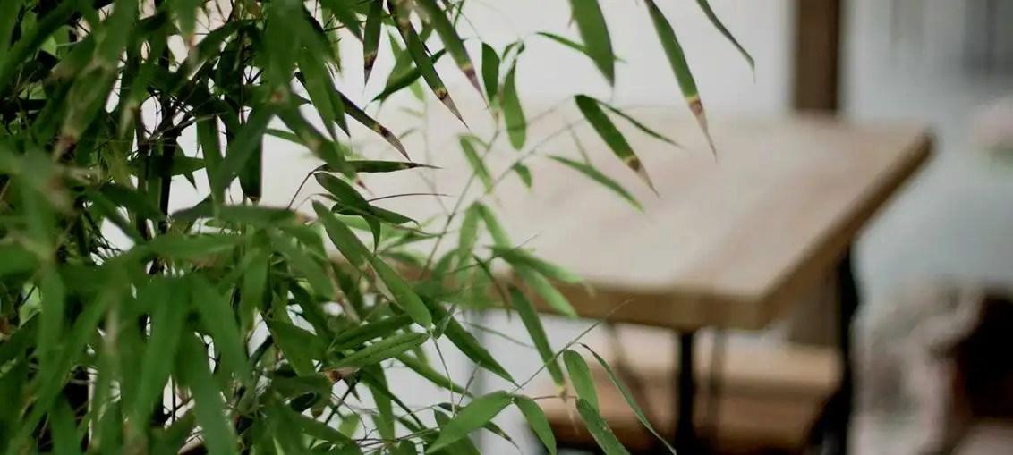 Risotto al Bambù ricetta di Al Bambù Ristorante