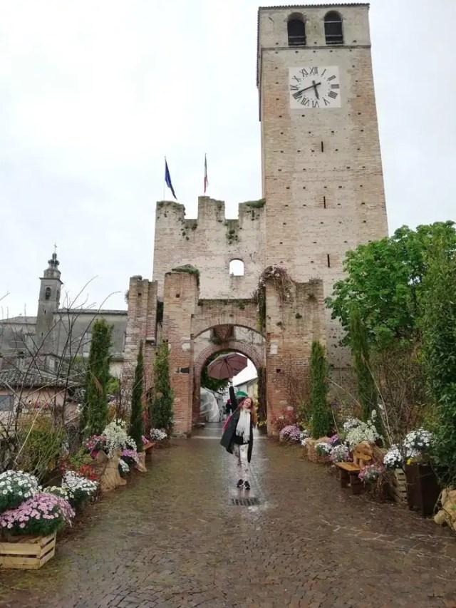 """mostra mercato dedicata ai fiori """"I Fiori di Castellaro Lagusello"""""""