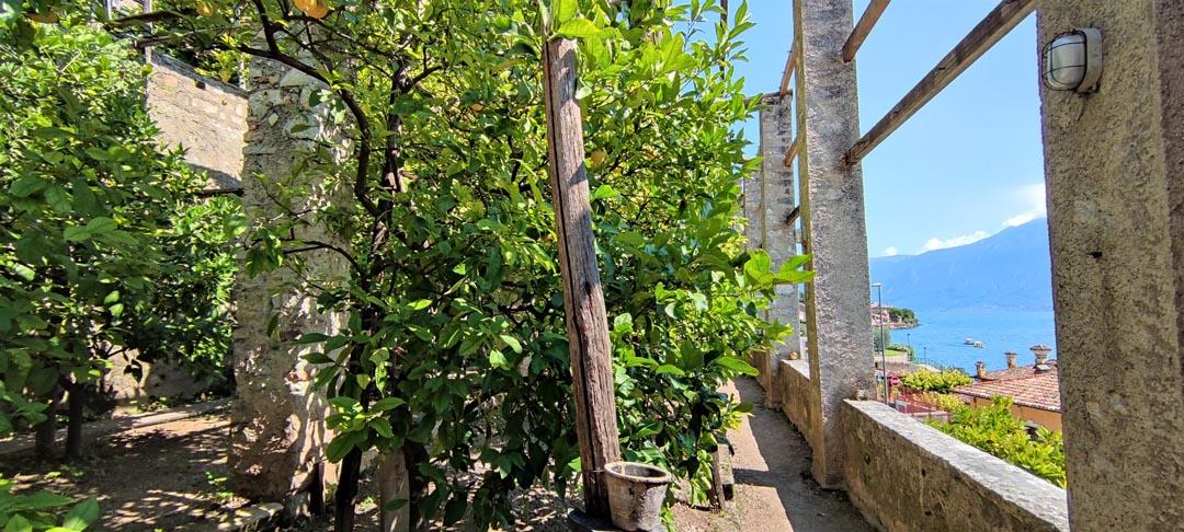 Visita Limonaia La Malora di Gargnano sul Lago di Garda