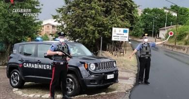 Oppido Lucano: Sorpreso con piante di cannabis e munizionamento detenuto illegalmente
