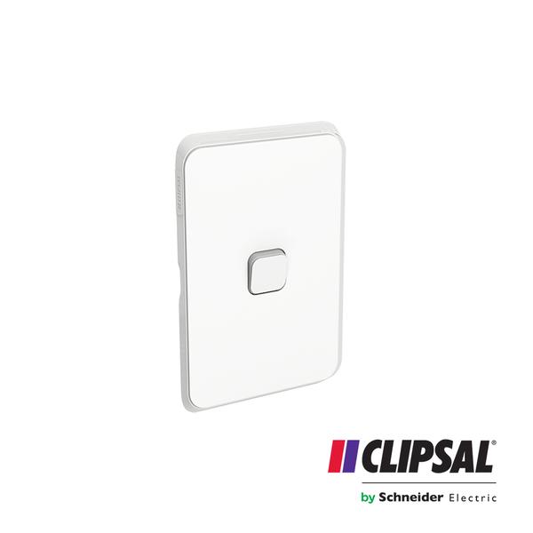 Flush Switch, 1 Gang, 1-Way/2-Way, Vertical Mount, 250V, 10AX