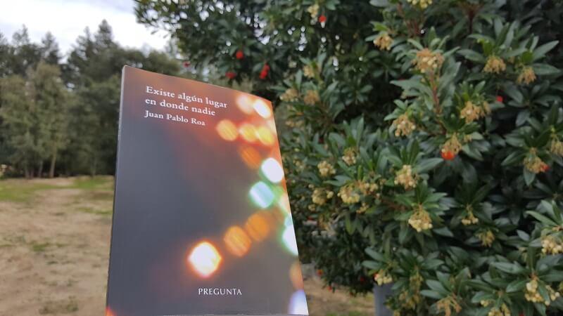 Reseña de Existe un lugar en el que nadie - libro