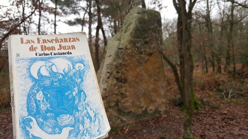 Las enseñanzas de Don Juan: ideas subrayadas
