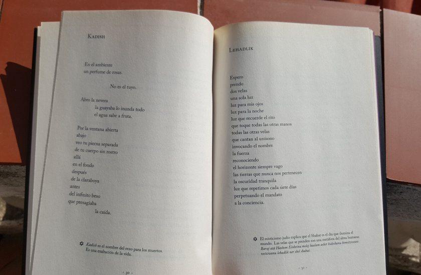 Poemas del libro Shir de Mónica Gontovnik