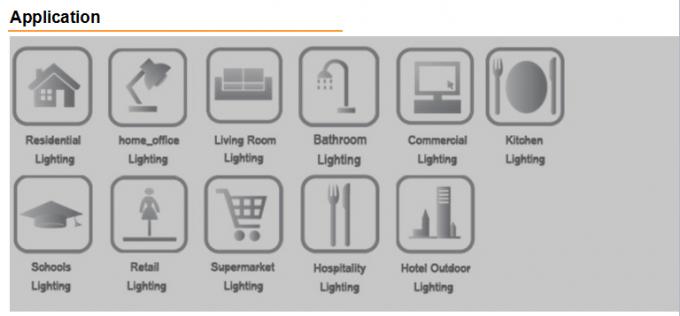 230V Emergency Decorative LED Bulkhead Light IP65 6000K