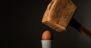 egg oeuf