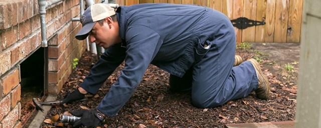 Ledford's Termite Inspection Professionals