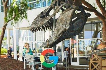 Stan le dinosaur au Googleplex 2