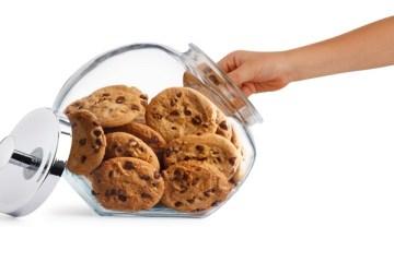 Pris la main dans la boite à cookies