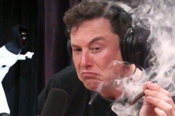 """Le Tesla Bot et son """"inventeur"""""""