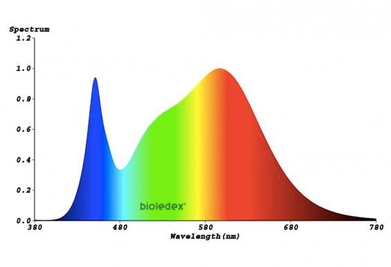 Lichtspektrum 20 Watt T8 LED Röhre