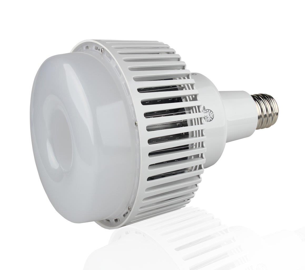 Motion Sensor Flood Light Bulb