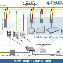 4 Way Switch With Dimmer Wiring Diagram Water Cycle And Explanation Dali Dimming Led Panel Light Theledlight