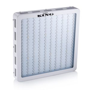 King LED Grow Light Review 1200w Full Spectrum