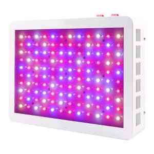 BLOOMSPECT LED Review - 600W LED Grow Light