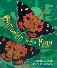 Cover of Butterfly for a King: Saving Hawai'i's Kamehameha Butterflies