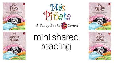 mini shared reading