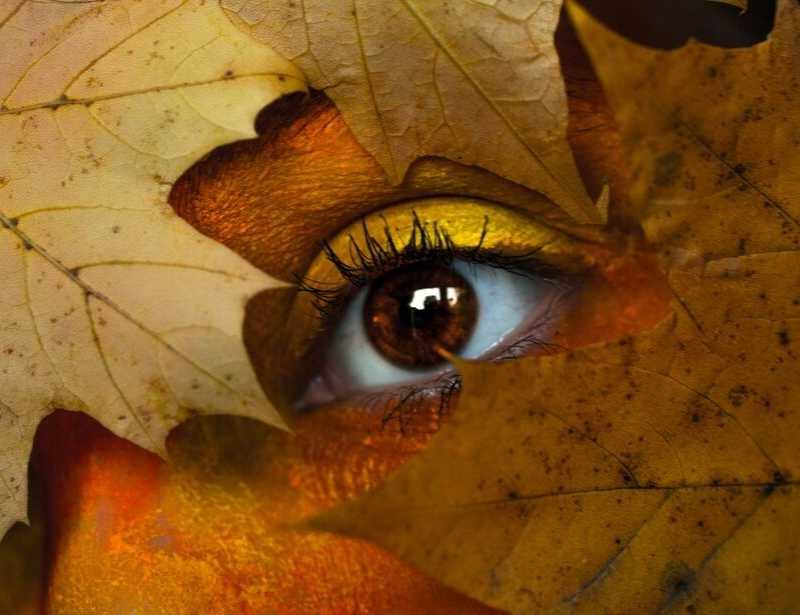 Kijk met nieuwe ogen