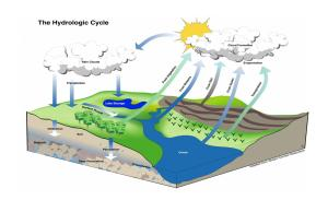 What is a Watershed Basin?