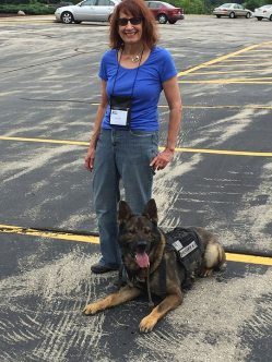TLO and K9_2
