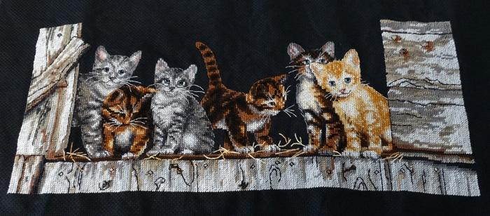 geborduurde katten