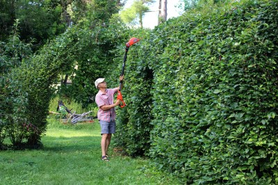 Shearing my tall hedge with Black & Decker pole pruner