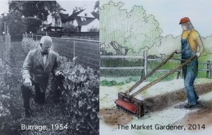 1950s vs the present: Different look but 2 good gardeners