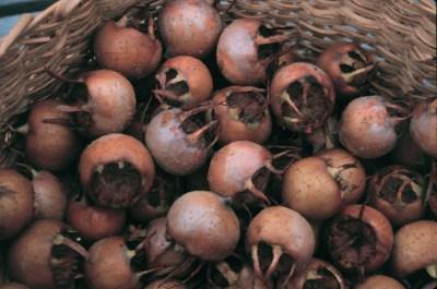 Medlar, fruit in basket