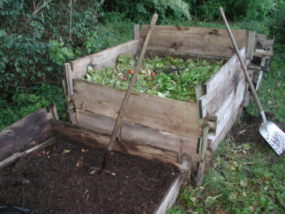 Compost, in the making