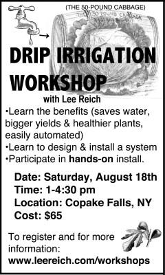 Drip workshop ad, 2018