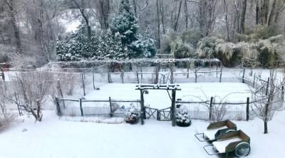 Winter scene, N garden