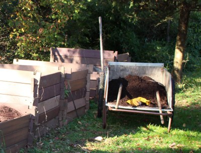 My compost piles