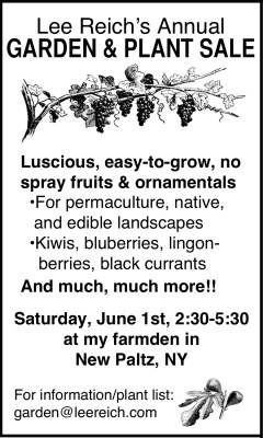 Plant sale annoucement for June 1st 2019