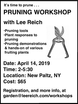 Pruning workshop announcement